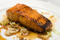 Grilled fish fillet on a plate Royalty Free Stock Photo