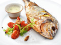 Grilled healthy dorado fish with vegetables on a round plate Royalty Free Stock Photos
