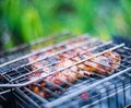 Grilled meat on the grill Royalty Free Stock Image