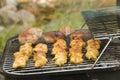 Grilled meat pork 库存图片