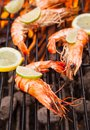 Grilled prawns fresh on fire Royalty Free Stock Photo