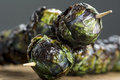 Grilled purple brussels sprout kabobson skewers three organic spouts on set on wood Stock Image