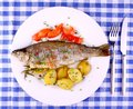 Grilled rainbow trout with red pepper potato and lemon top view Stock Photos