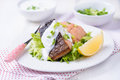 Grilled red fish fillet Royalty Free Stock Photo
