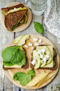 Grilled rye sandwiches with cheese, spinach, pesto, avocado and Royalty Free Stock Photo