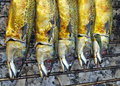 Grilled saba fish Royalty Free Stock Photos
