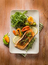 Grilled salmon capsicum arugula Stock Images