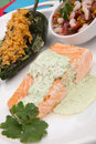 Grilled Salmon With Cilantro - Jalapeno Creme Stock Photography