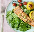 Grilled salmon food photography recipe idea Royalty Free Stock Photo