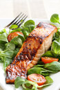 Grilled salmon with a honey glaze on bed of lambs lettuce Stock Image