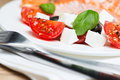 Grilled salmon on plate with greek salad Royalty Free Stock Photography