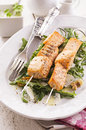 Grilled salmon skew with rocket salad as closeup on a white plate Stock Image