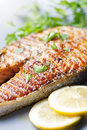 Grilled salmon steak Royalty Free Stock Images