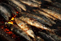 Grilled sardines closeup view of fresh manually mediterranean Stock Photo