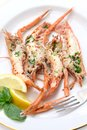 Grilled scampi on white dish Stock Image