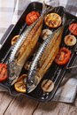 Grilled sea fish and vegetables in a pan grill, vertical top vie Royalty Free Stock Photo
