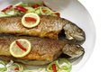 Grilled trout fish Royalty Free Stock Photo