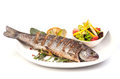 Grilled trout with lime and salad Royalty Free Stock Photo