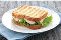 Grilled tuna sandwich Royalty Free Stock Photography