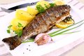 Grilled whole trout potato lemon and garlic close up Royalty Free Stock Images