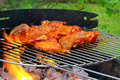 Grilling chicken Royalty Free Stock Photo