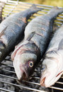 Grilling fish  Royalty Free Stock Photo