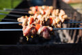 Grilling marinated shashlik on a grill. Shashlik is a form of Shish kebab popular in Eastern, Central Europe and other places. Royalty Free Stock Photo