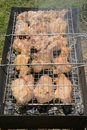 Grilling meat marinated on a charcoal grill Royalty Free Stock Photography