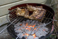 Grilling ribs on barbecue spare a in the garden Royalty Free Stock Photos