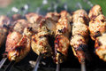 Grilling shashlik on a grill Royalty Free Stock Photo