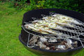 Grilling trout Stock Images