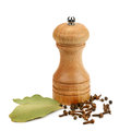 Grinder and spices Royalty Free Stock Photo