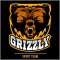 Grizzly mascot - team logo design. Royalty Free Stock Photo
