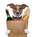 Grocery bag dog wine tomatoes Stock Images