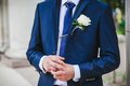 Groom with the boutonniere and tie Royalty Free Stock Photo