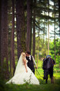 Groom with the bride and a brown horse on walk Stock Photography