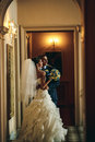 Groom and bride is  hugging on the background hall Royalty Free Stock Photo