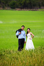 Groom and bride posing in a paddy field Royalty Free Stock Photography