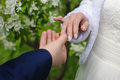 Groom gives an engagement ring to his bride. Royalty Free Stock Photo