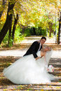 The groom holds the bride leaning for support. Stock Photos