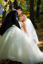 The groom holds the bride leaning for support. Royalty Free Stock Photo