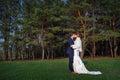 Groom Kisses The Bride On A Ba...