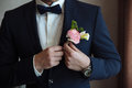 The groom puts on a boutonniere on a wedding day on a jacket Royalty Free Stock Photo
