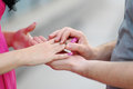 Groom puts ring on the bride's hand. close-up Royalty Free Stock Photo