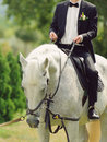 Groom with rein on horse sitting and holding Royalty Free Stock Image