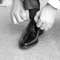 Groom shoes putting his wedding Royalty Free Stock Photography