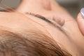 Grooming The Eyebrows Thread I...