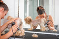 Grooming female groomer haircut yorkshire terrier Stock Photo