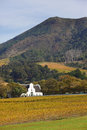 Groot Constantia Royalty Free Stock Photography