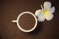 Ground coffee and flower Royalty Free Stock Photo